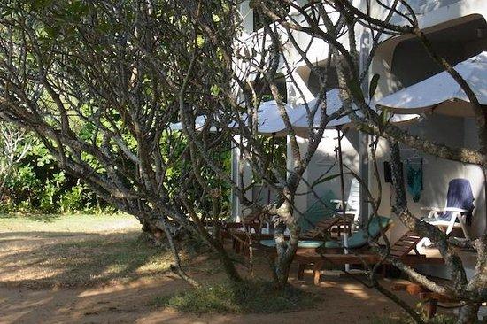 The Oasis Ayurveda Beach Hotel: Hotelansicht