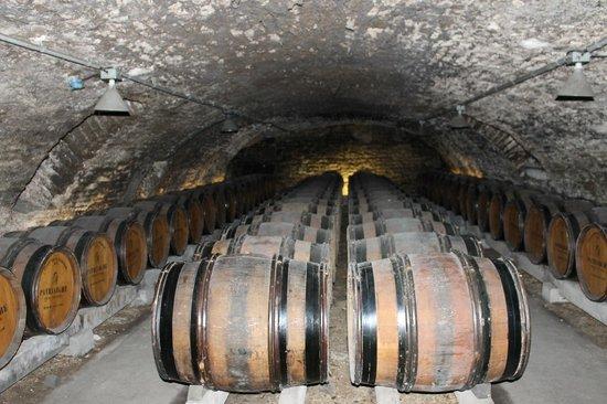 Patriarche Pere & Fils : Wine Caves