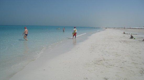 Park Hyatt Abu Dhabi Hotel & Villas : Excellent beach and very clear water
