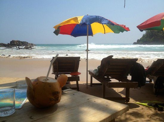 Angel Rest House : King Coconut...lecker