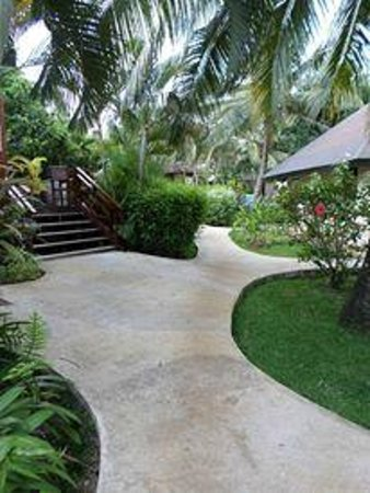 Mangoes Resort : Path to our bungalow