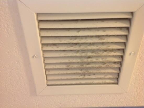 Holiday Inn Express Cathedral City (Palm Springs): Fuzzy vent in bathroom.