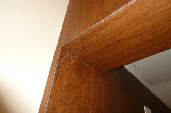 Amberton Cozy : spider net