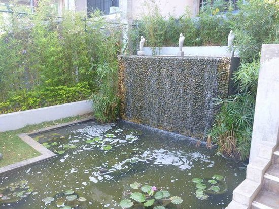 Theva Residency : Fountain