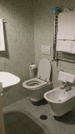 Hotel Anglo Americano : small bathroom