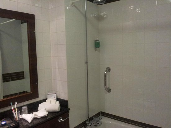 Handels Hotel Temple Bar: baño