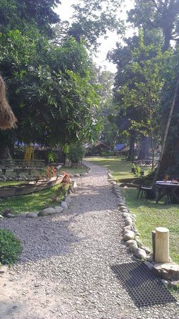 Nameri Eco Camp: The walk way