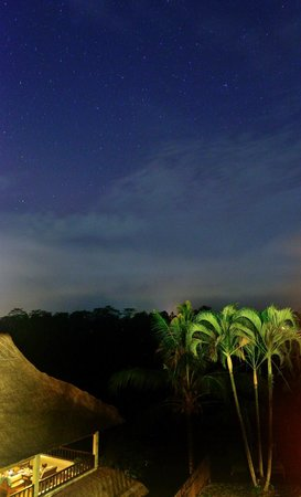 Villa Indah Ubud: beautiful starry sky