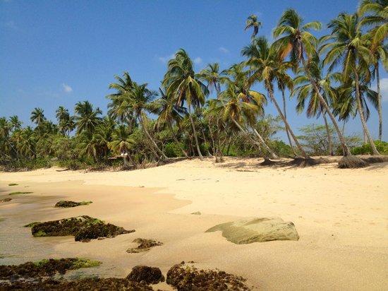 Patini Bungalows - Beach Garden: Traumstrand...viele Shiva-Eyes