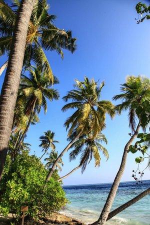 Biyadhoo Island Resort: на берегу