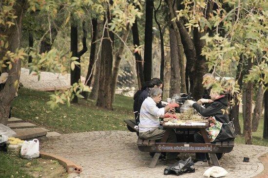 Macka Parkı: Maçka parkı - парк Мачка