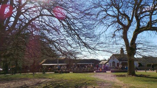 Ashridge Estate: brownlow cafe