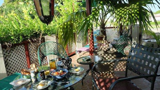 Emville Guesthouse: Garden View Studio - Terasse