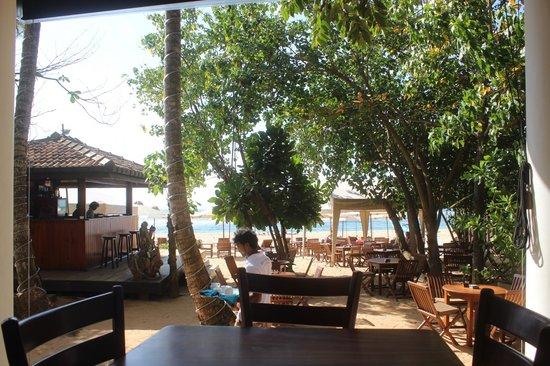 Kingfisher Hotel : restaurant /bar area