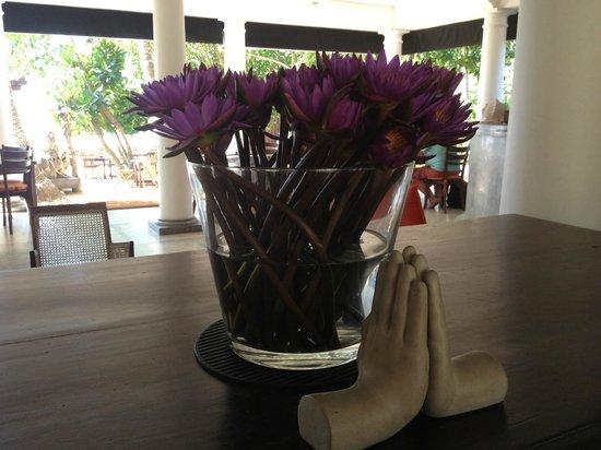 Kingfisher Hotel : reception area