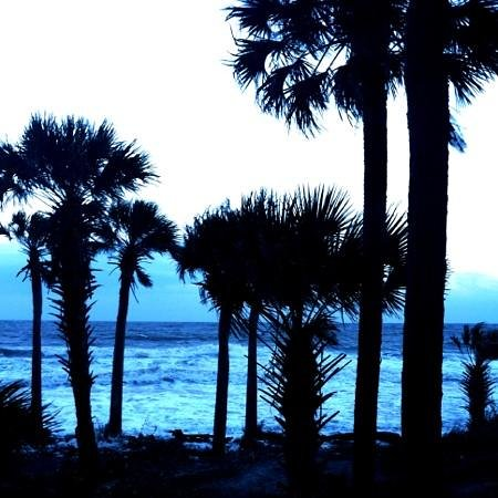 Hunting Island State Park Campground: dusk