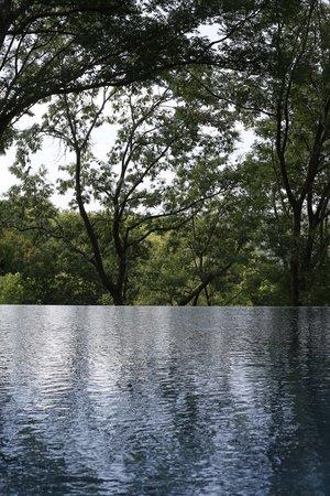 Mawell Resort: ..Nicht ohne Grund nennen wir ihn Waldpool!