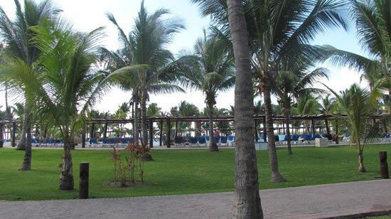 Hotel Barcelo Maya Beach: View from room