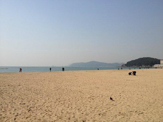Haeundae Beach: 海雲台ビーチ
