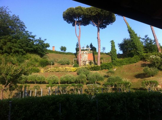 Cantine Basile: The view from the veranda