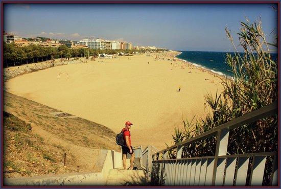 Mont-Rosa Hotel : пляж Калельи