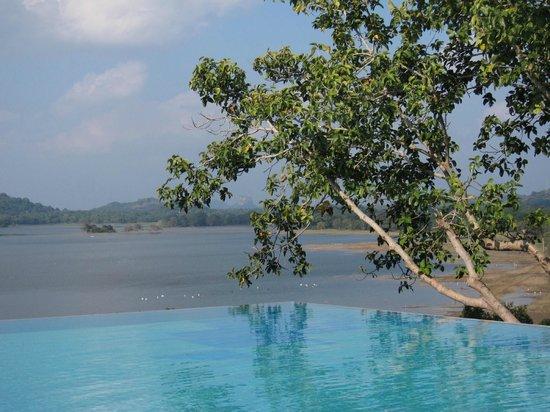 Heritance Kandalama: Infinity Pool, Sigiriya view