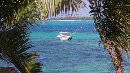Tropical Attitude: lagon