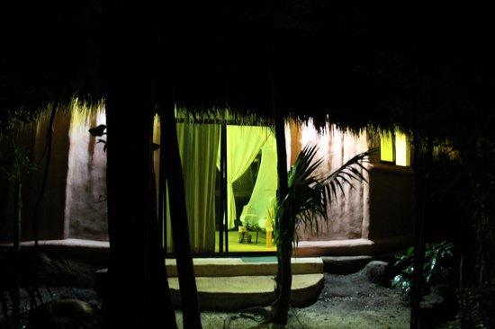 Jolie Jungle : Outside the bungalow