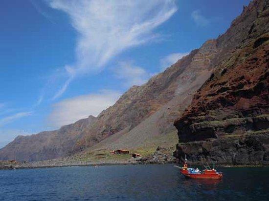 Bonita da Madeira : Desertas Islands