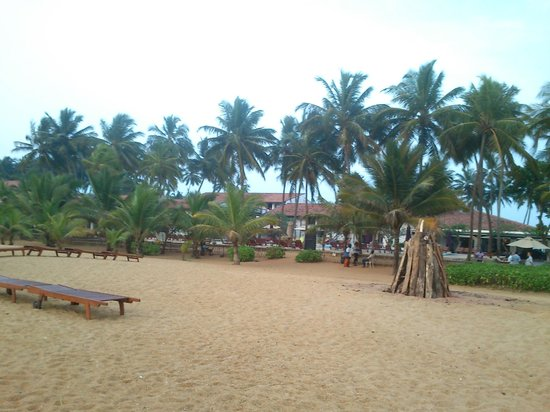 AVANI Kalutara Resort: A view of the hotel from the beach