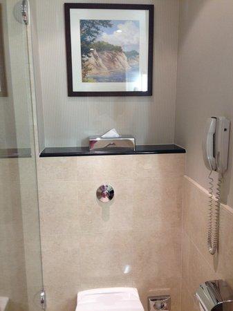 InterContinental Hotel Warsaw: Above the toilette: details, details, details!
