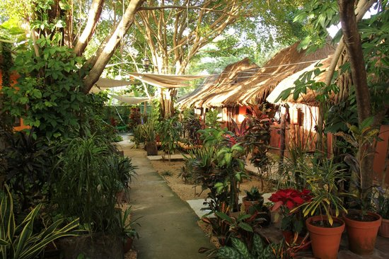 Secret Garden Hotel : Garden with lounge area