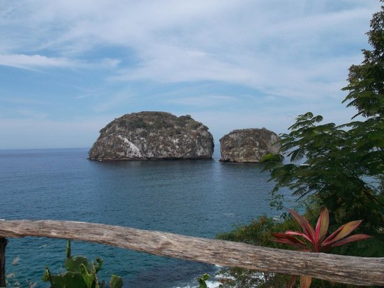 Hotel Riu Vallarta : îles Baie de Bandéras