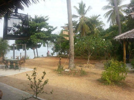 Fisherman's Cottage: Palmen im Resort