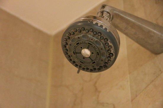 Melia Kuala Lumpur: shower head dont look clean
