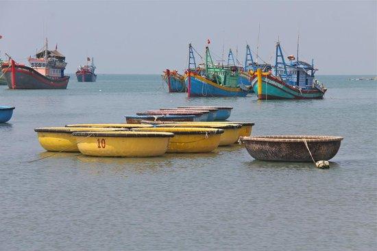 Mui Ne Harbor: Round vs conventional boats.