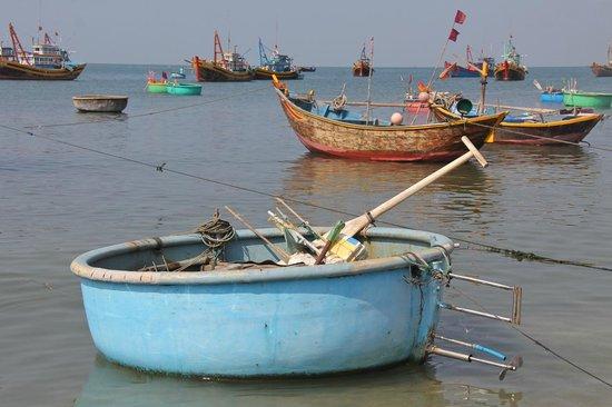 Mui Ne Harbor: Contrasting boats.