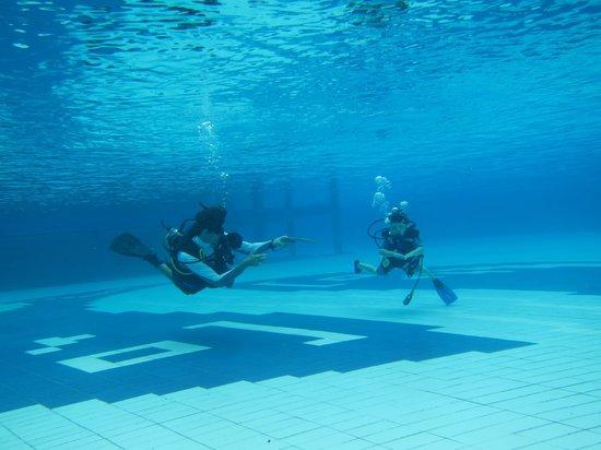 Sea Fun Divers - Day Trips: HUGE Pool at Le Meridian