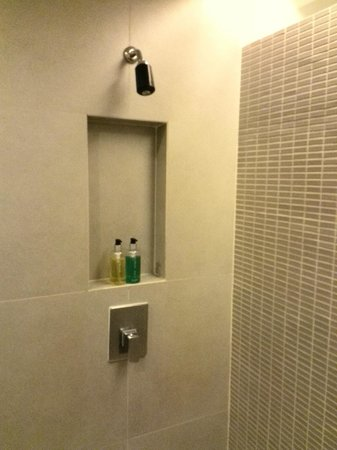 Trinity Silom Hotel : good water pressure but no bathtub in this room
