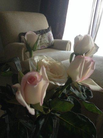 Riad Villa Blanche: Des roses en bouquet comme partout dans le riad