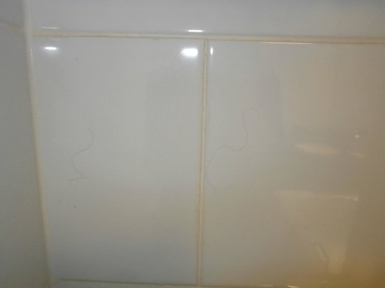 Holiday Inn Doncaster A1(M), Jct. 36: Hair on the bathroom tiles