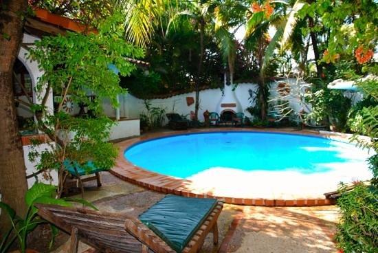 Secret Garden Chiang Mai: Pool