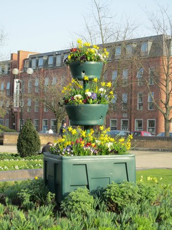 Queen's Gardens : Floral Display in March