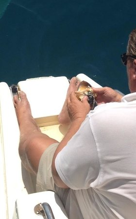 Belize Sailing Charters - Day Trips: Capt. Rob getting the conch out of it's shell.