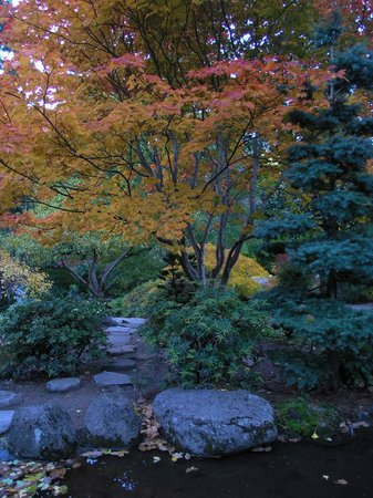 Parque Lithia: The Japanese Garden is delightful
