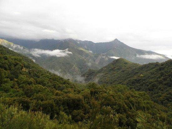 Wuksachi Lodge: Nous passons au dessus des nuages