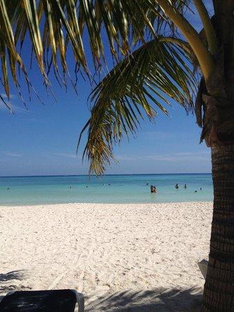 Hotel Barcelo Maya Beach: paradise