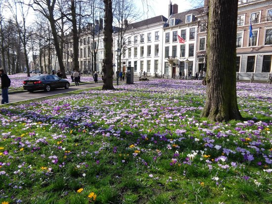 Hotel Des Indes, a Luxury Collection Hotel : square outside of the hotel