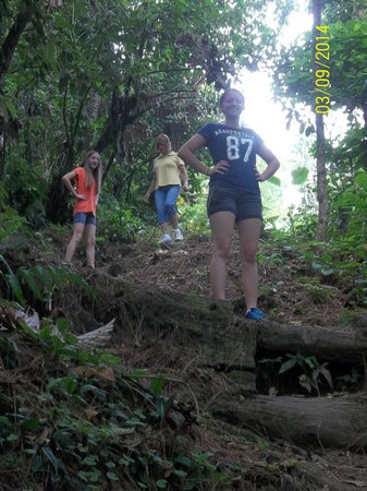Arenal Observatory Lodge & Spa: Old lava trail