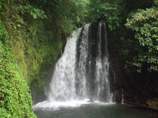 Arenal Observatory Lodge & Spa: Short hike to waterfall at the Lodge